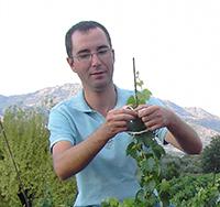Filippo Grasso Enotecnico (Direttore produzione)